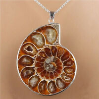 Hot Madagascar Sea Natural Druzy Ammonite Slice Shell Gemstone Pendant Necklace