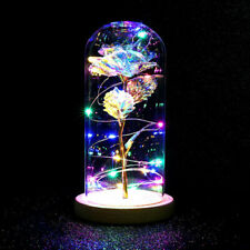 Rose In A Glass Enchanted Inspired Light Up Dome LED Light Lamp Decor Gift