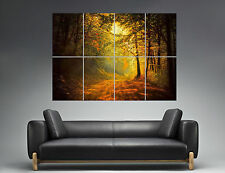 Otoño Naturaleza Chimenea Bosque Acostado sol bosque Wall Arte Cartel Poster A0