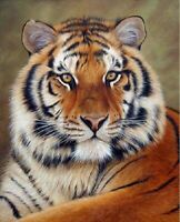5D DIY Diamond Painting Part Drill Tiger Embroidery Cross Stitch Kit Home Decor
