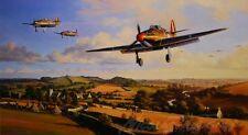 Hurricane Heroes by Nicolas Trudgian Hurricanes of 87 Squadron