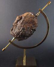 Rare large Wolfe Creek meteorite -best of the best