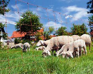 Réseau de Mouton Clôture Électrique Filet Barrière pour Bétail Chèvre Net