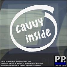 1 x Cavvy all'interno-Finestra, Auto, Furgone, STICKER, SEGNO, Adesivo, Cane, Pet, su, Board, Animale