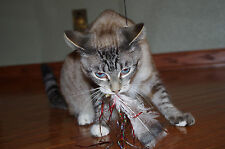 Original Teaser Cat Toy Made in USA
