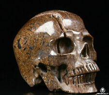 "Huge 5.1"" Shimmering Bronzite Carved Crystal Skull, Realistic, Crystal Healing"