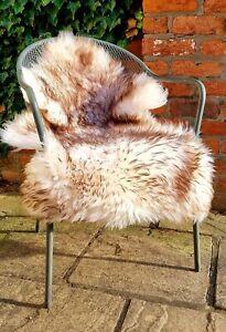 XXL British Cream and Brown Wolftip Sheepskin Rug - 110cm by 75cm A++ (4471)