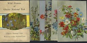 EARLY PACK OF WATERTON LAKES & GLACIER NATIONAL PARK HOTEL CO SOUVENIR POSTCARDS