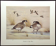 """John MacLeod """"Canadas at Nags Head"""" Hand Signed & Numbered Art Print, Geese"""
