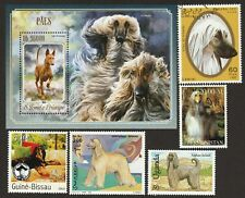 Afghan Hound * Int'l Dog Postage Stamp Art Collection * Great Gift Idea *