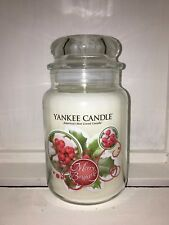 Yankee Candle 22oz 623g Large Jar Merry & Bright Deerfield RARE HTF White Labe