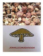 Dried mushroom Agaricus blazei 310 grams