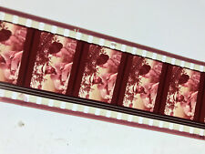 Women in Love 1969 35mm Color Red Band Trailer Ken Russell D.H. Lawrence
