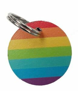 Small 25mm Personalised Rainbow Pet ID Tag
