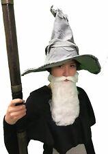 Harry Potter/World Book Day/-Dumbledore WIZARD WITCH HAT & BEARD Kids Set