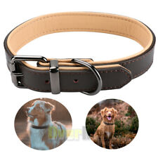 "1.5"" Width Padded Dog Collar HEAVY DUTY  LEATHER for Samll Medium Large Pet Dog"