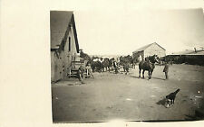 Rppc Postcard Horses, Border Collie & Men Getting Ready for Ranch Work Nebraska