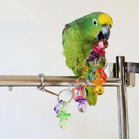Parrot Bird Bites Chew Acrylic Toys Swing Cage Hanging Cockatiel Parakeet FO