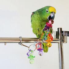 Parrot Bird Bites Chew Acrylic Toys Swing Cage Hanging Cockatiel Parakeet P8