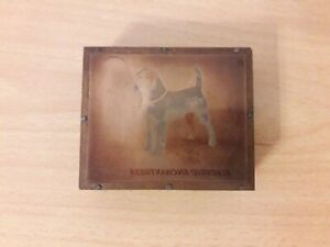 Parson Russell Terrier Vintage Copper Printing Block (Electric Enchantress)