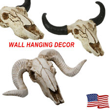 Resin Longhorn Bull/Cattle/Cow Ram/Sheep/Coat Skull Head Home Decor Sculpture Us