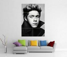 NIALL HORAN ONE DIRECTION 1D TAKE ME HOME THIS IS US GIANT ART POSTER J246