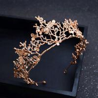 Gold Leaf Dragonfly Crown Crystals Headband Wedding Bridal Hair Tiara Rhinestone