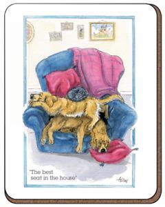 Golden Retriever Dog & Cat Lovers Drinks Coaster Mug Mat  Alison's Animals Gift