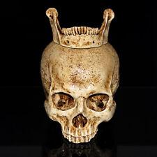 Human Skull Replica Resin Sculpture Model Collectible Halloween Decoration