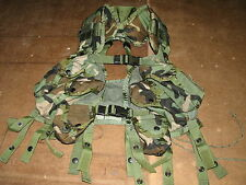 enhanced LBV load bearing vest woodland camo military USGI issue paintball ammo
