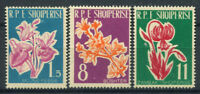 Albanien 1961 Mi. 633-635 Postfrisch 100% Blumen