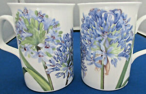 AGAPANTHUS PAIR of 2 FINE BONE CHINA mugs MADE IN ENGLAND  by Roy Kirkham  NEW
