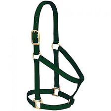 Dark Green WEAVER Small Horse Halter Brass Hardware QUALITY New With Tags