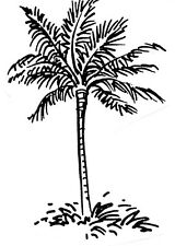Unmounted Rubber Stamps Set, Trees,  Palm Tree, Island, Beach, Tropical, Palms