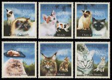 Guinea 2009 - Mi-Nr. 7177-7182 ** - MNH - Katzen / Cats