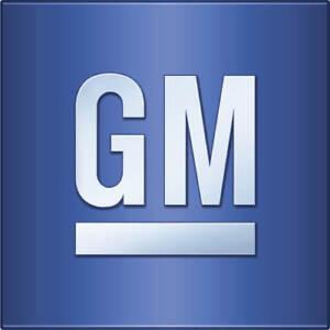 Genuine GM Air Filter 6483645