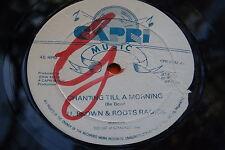 "12"" Rare Roots Reggae - Dub : U Brown & Roots Radics ~ Capri 0282"