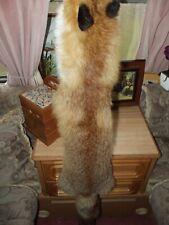 REAL FOX Fur Pelt Skin Taxidermy