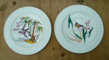 2 Antique 1870's Victorian Hand Coloured Tropical Bird Plates - Thomas Forester?