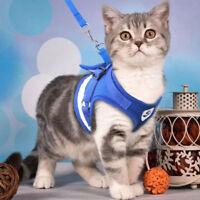 Soft Leash Small Pet Control Harness Dog Cat Mesh Walk Collar Safety Vest CHK