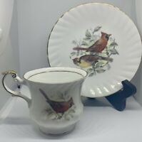 Queen's Fine Bone China -  Made in England - tea cup and saucer BIRDS OF AMERICA