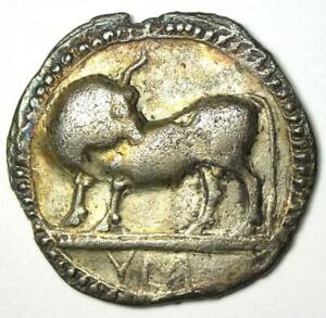 Greek Lucania Sybaris AR Stater Bull Coin 550 BC. Certified NGC VF (Certificate)