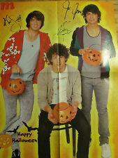 The Jonas Brothers, Four Page Foldout Poster