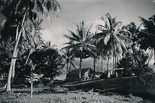 TAHITI c. 1940 - Cases sous Cocotiers - Photo Nordmann - T 215