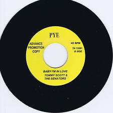 TOMMY SCOTT & THE SENATORS (aka TOM JONES) - BABY I'M IN LOVE - rockabilly JIVER