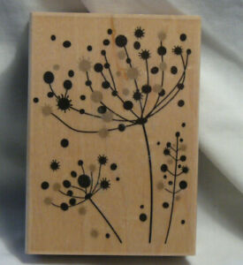 Pop Stems WM Rubber Stamp by Hero Arts.  background, flower