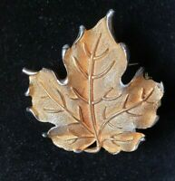 Gold tone large Maple Leaf textured Brooch/pin Canada,