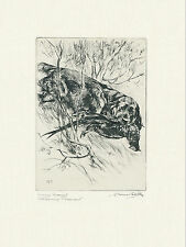 SUSSEX SPANIEL AND PHEASANT OLD 1930'S DOG ART PRINT OF GUNDOGS by VERNON STOKES