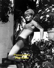 DEBBIE REYNOLDS 8X10 Lab Photo B&W 1950s SEXY Swimwear Swimsuit Leggy Pin-up