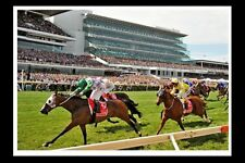 PRINCE OF PENZANCE winning 2015 Melbourne Cup modern Digital Photo Postcard